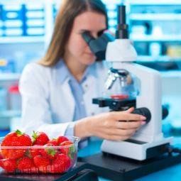 Corso specializzazione Food Safety