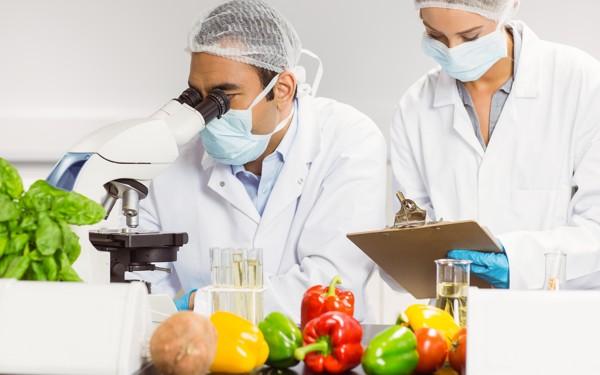 mini master sicurezza alimentare gruppo maurizi